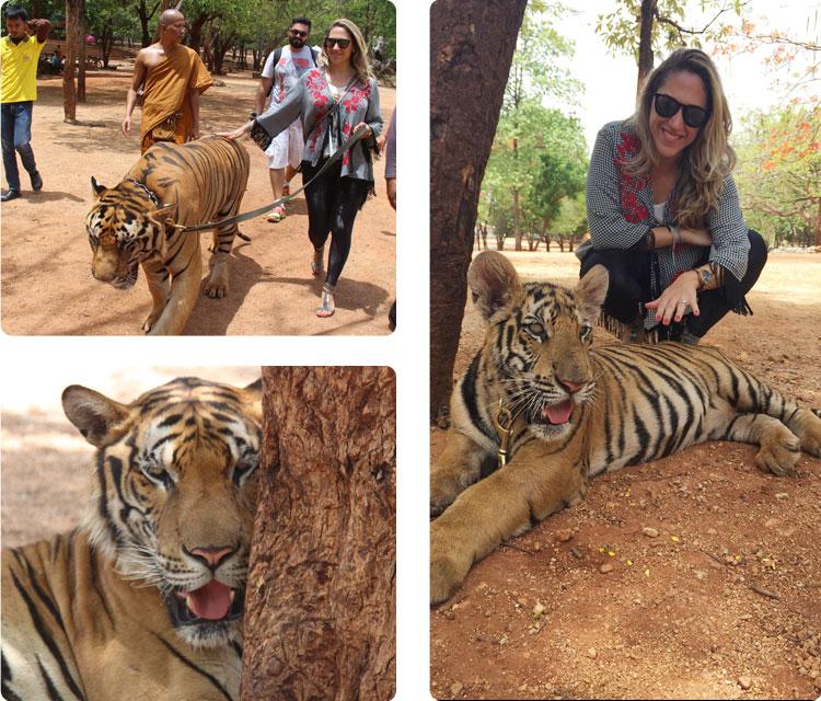bangk_tigres